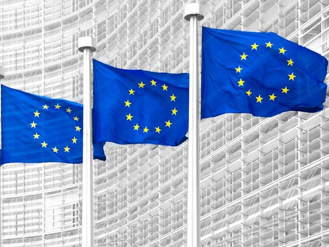 EU flags resized